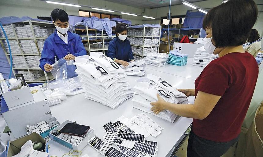 Việt Nam đã có 14 FTA đi vào thực thi, doanh nghiệp cần nắm rõ quy định xuất xứ trong các FTA để tận dụng ưu đãi thuế Ảnh: Đ.T