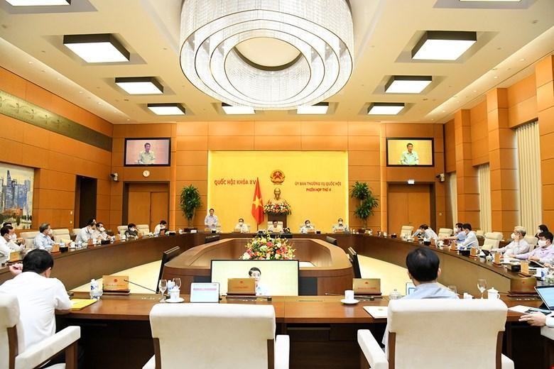 Ủy ban Thường vụ Quốc hội cho ý kiến về Luật sửa đổi, bổ sung một số điều của Luật Thống kê.