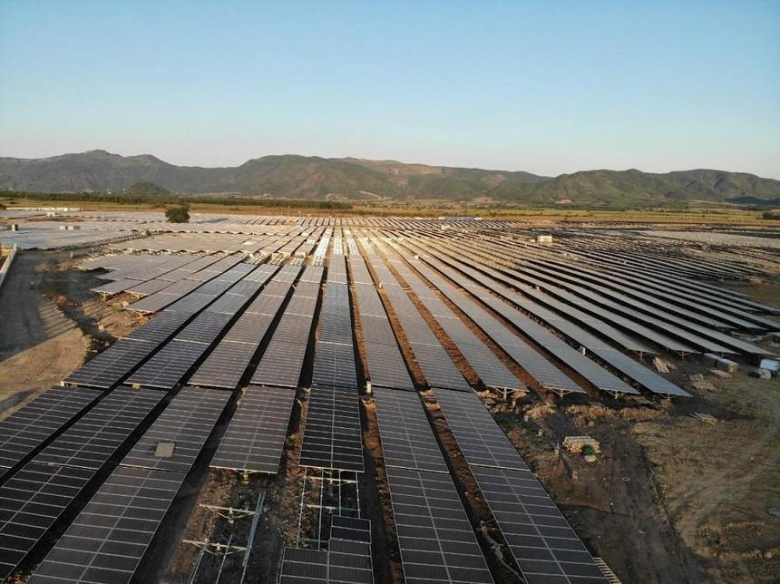 Năng lượng và Bất động sản Trường Thành (TEG) đấu giá thành công 10 triệu cổ phần