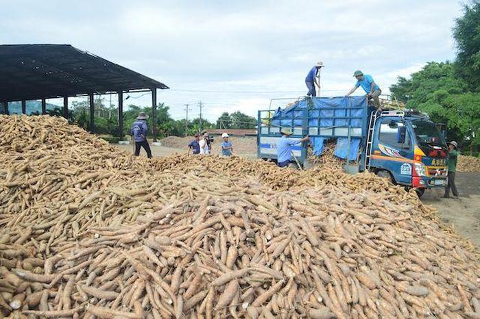 Nông sản thực phẩm Quảng Ngãi (APF) chia cổ tức bằng cổ phiếu, tỷ lệ 10:1
