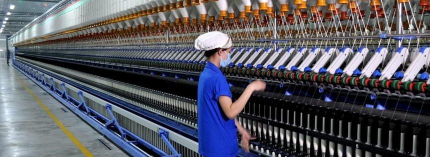 Việt Thắng (TVT) trả cổ tức năm 2020 bằng tiền, tỷ lệ 17%