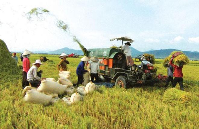 Tìm kế sách vực vốn FDI vào nông nghiệp