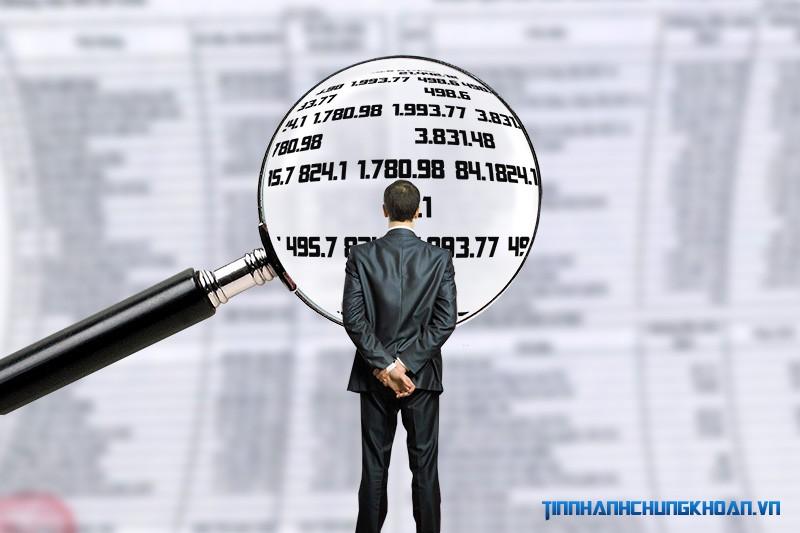 VHG: Bất thường trên báo cáo tài chính quý II